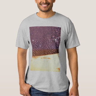 IMG_2545 Eight seconds found object Tee Shirt
