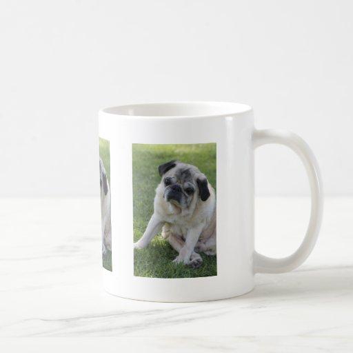 IMG_2874 CLASSIC WHITE COFFEE MUG