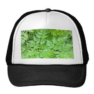 IMG_3126.JPG TRUCKER HAT