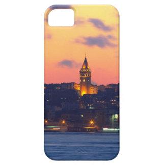 IMG_3404 copy.jpg iPhone 5 Covers