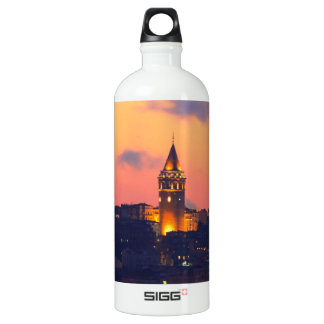IMG_3404 copy.jpg SIGG Traveler 1.0L Water Bottle