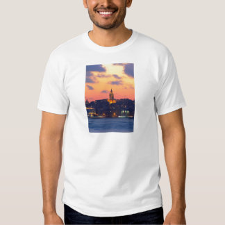 IMG_3404 copy.jpg T-shirt