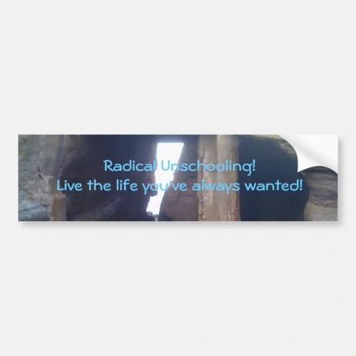 IMG_3408, Radical Unschooling!Live the life you... Bumper Sticker