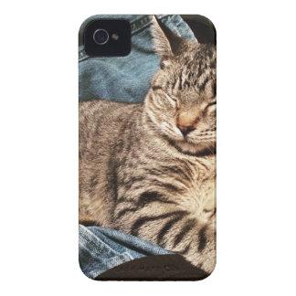 IMG_3960.JPG Case-Mate iPhone 4 CASE