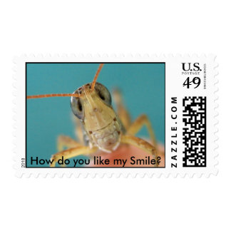 IMG_4032, How do you like my Smile? Postage Stamps