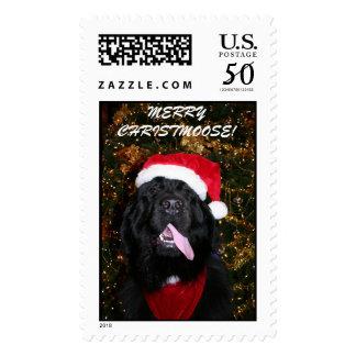 IMG_4064, MERRY CHRISTMAS! POSTAGE