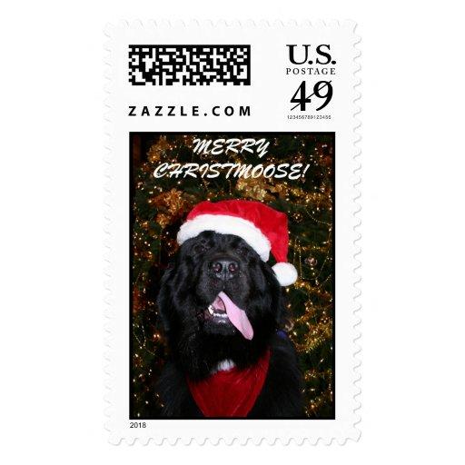 IMG_4064, MERRY CHRISTMAS! STAMP
