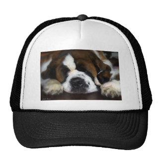 IMG_4069 TRUCKER HAT