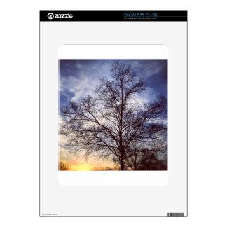 IMG_4505.JPG DECAL FOR THE iPad