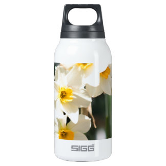 IMG_4523.JPG THERMOS BOTTLE