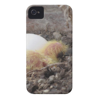 IMG_6364.jpg Case-Mate iPhone 4 Case