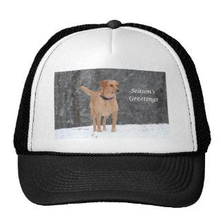 IMG_6525 Season's Greetings Mesh Hat