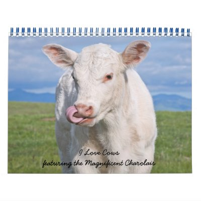 IMG_6979, I Love Cows featuring the Magnificent... Wall Calendar