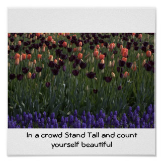 IMG_7242, In a crowd Stand Tall and count yours... Posters