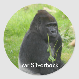 IMG_8810, Mr Silverback Classic Round Sticker