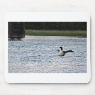 IMG_9204_1 MOUSE PAD