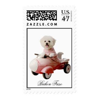 IMG_9658-F1 copy, Bichon Frise Postage