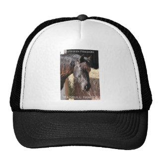 IMG_9811 TRUCKER HAT