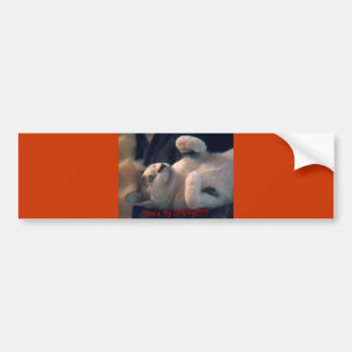 IMGA0885, How's My Driving???? Car Bumper Sticker