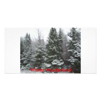 IMGP0140 Winter Wonderland Photo Greeting Card