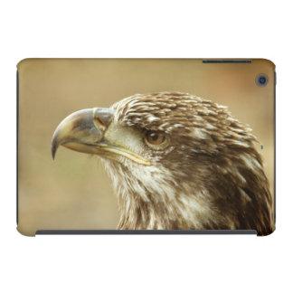 Immature Bald Eagle iPad Mini Case