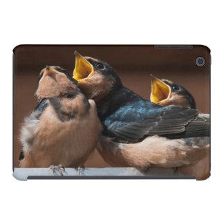 Immature Barn Swallow (Hirundo Rustica) iPad Mini Retina Cover