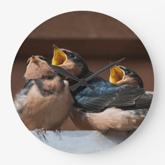 Immature Barn Swallow (Hirundo Rustica) Wallclock