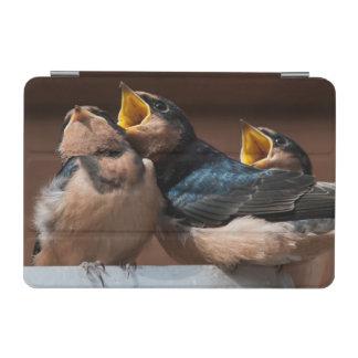 Immature Barn Swallow (Hirundo Rustica) iPad Mini Cover