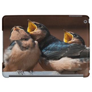 Immature Barn Swallow (Hirundo Rustica) Case For iPad Air