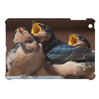 Immature Barn Swallow (Hirundo Rustica) iPad Mini Covers