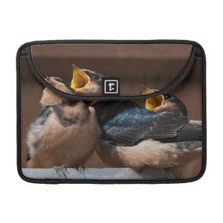 Immature Barn Swallow (Hirundo Rustica) Sleeve For MacBook Pro