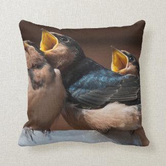 Immature Barn Swallow (Hirundo Rustica) Pillow