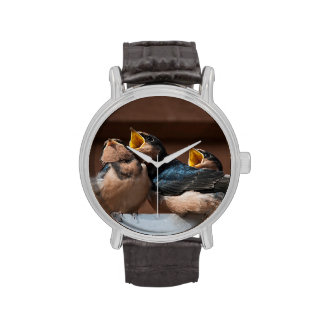 Immature Barn Swallow (Hirundo Rustica) Wrist Watch