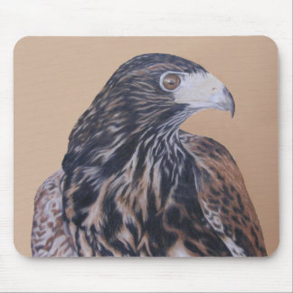 Immature Harris Hawk Mouse Pad