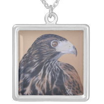 Immature Harris Hawk Silver Plated Necklace