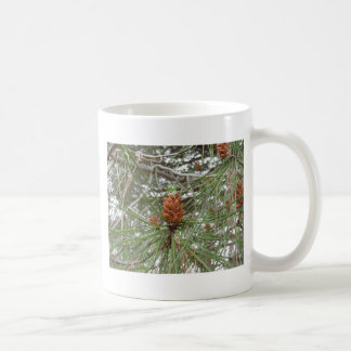 Immature male or pollen cones of pine tree coffee mug