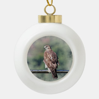 Immature Red Tailed Hawk Ceramic Ball Christmas Ornament