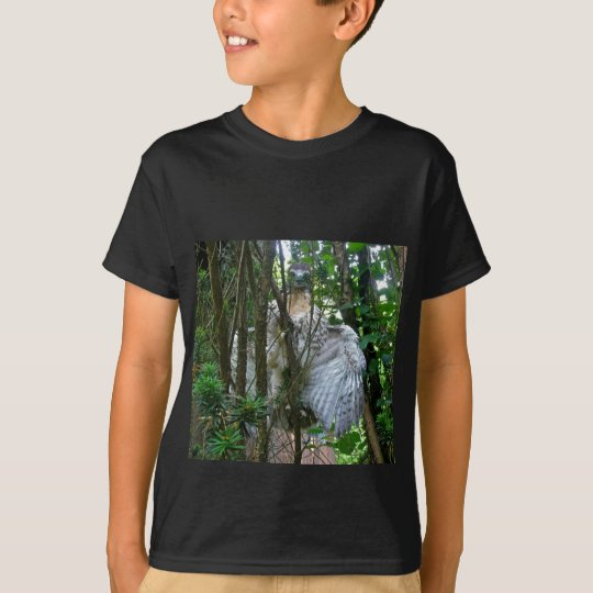 Immature Red Tailed Hawk Coordinating Items T-Shirt