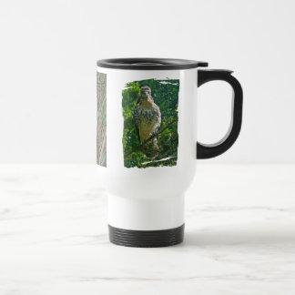Immature Red Tailed Hawk Coordinating Items Travel Mug