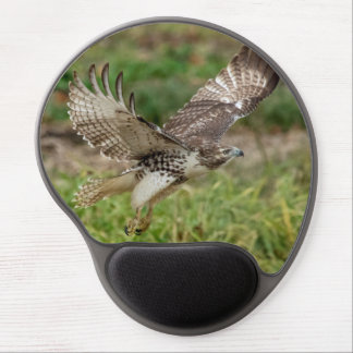Immature Red Tailed Hawk Gel Mouse Pad