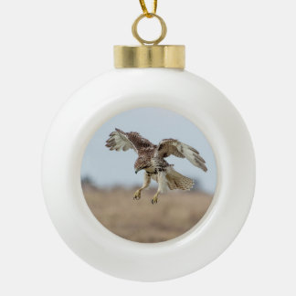 Immature Red Tailed Hawk Hovering Ceramic Ball Christmas Ornament