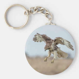 Immature Red Tailed Hawk Hovering Keychain
