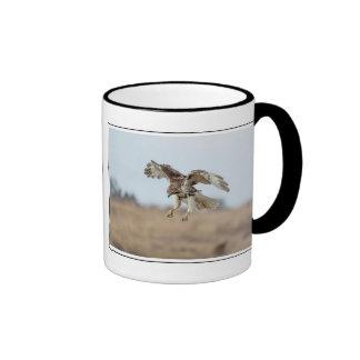 Immature Red Tailed Hawk Hovering Ringer Mug