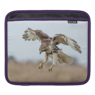 Immature Red Tailed Hawk Hovering Sleeve For iPads