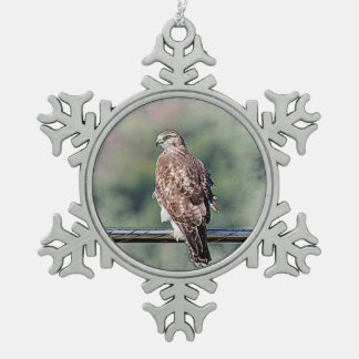 Immature Red Tailed Hawk Snowflake Pewter Christmas Ornament