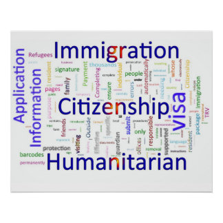 Immigration and Citizenship  Related Text Poster