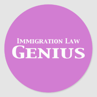Immigration Law Genius Gifts Classic Round Sticker