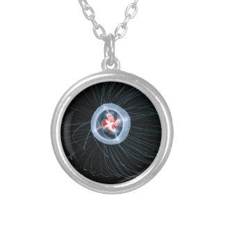 Immortal Jellyfish Round Necklace