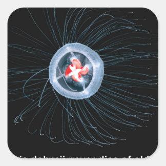 Immortal Jellyfish Square Stickers