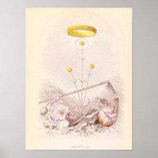 Immortelle or Everlasting Poster
